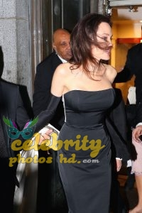 Hollywood Actress Angelina Jolie (1)