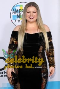 Hot and Cute Girl Kelly Clarkson (3)