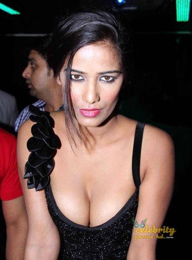 Indian super hot actress poonam pandey (4)