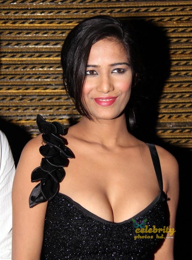 Indian super hot actress poonam pandey (6)