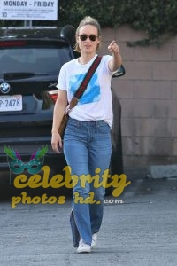 OLIVIA WILDE in Jeans Out in Los Angeles (4)