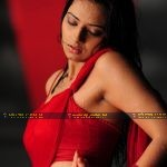 Isha Chawla Hot Wet saree in prema kavali movie