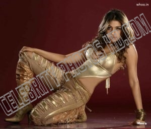 Aarti Chabria Hot Photos (6)