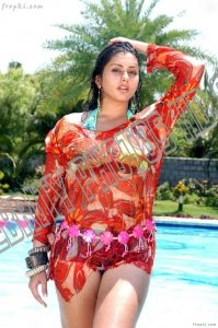 Hot South Indian Actress Namitha Kapoor Photos (6)