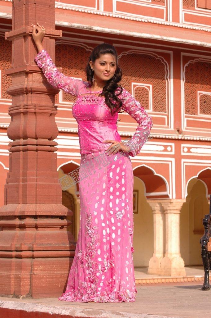 Indian Film Actress Sneha Latest Hot Photo