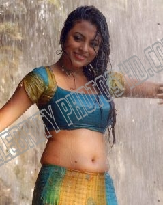 Meenakshi Hot Navel Half Saree (3)