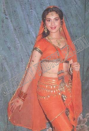 Meenakshi Sheshadri Hot Sexy Beautiful Sizzling Photos