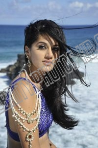 Taapsee Pannu Hot Photo (2)