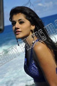 Taapsee Pannu Hot Photo (4)