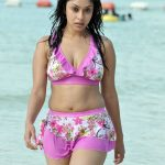 South Indian Actress Payal Ghosh Hot Bikini Photos and Wallpapers