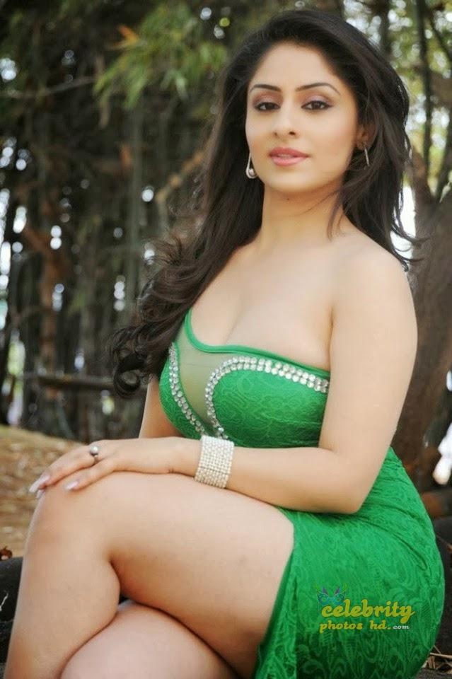 Ankita Sharma Spicy Hot Photos (6)