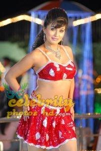 Hot Glamour Shagupta Jareen (2)