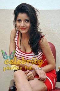 Indian hot girl Gehana Vasisth (2)