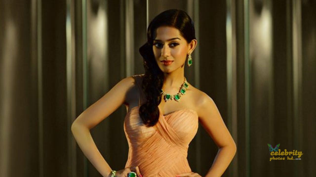 Bollywood Hot Actress Amrita Rao Photos.jpg (1)
