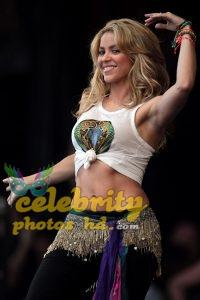Pop Singer Shakira Hot Photo (5)