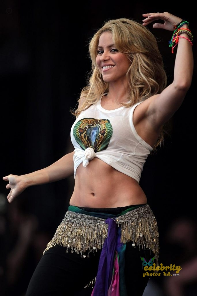 Pop Singer Shakira Hot Photo (5)
