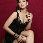 South Indian Hottest Model Monali Sehgal Photo's