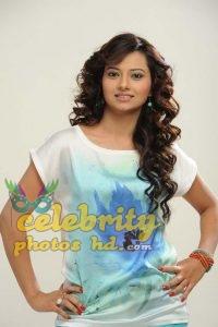 South Indian Super Hot Actress Isha Chawla (6)