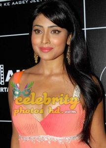 South Indian Super Spicy Hot Actress Shriya Saran (1)