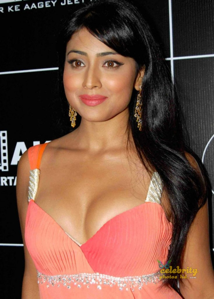 South Indian Super Spicy Hot Actress Shriya Saran (1)