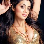 Hottest South Indian Super Actress Shriya Saran Photo's