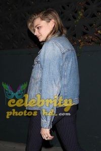 Chloe Moretz Hot Unseen Photo (4)