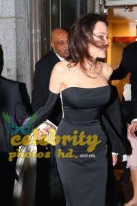Hollywood Actress Angelina Jolie (1)