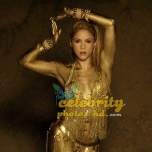 Shakira Perro Fiel Video Gold Body Paint (6)