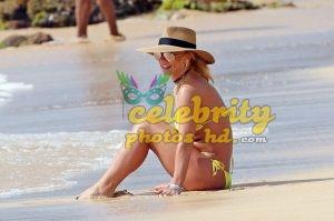 BRITNEY SPEARS in New Bikini at a Beach in Hawaii (2)