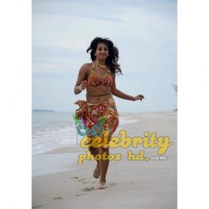 Indian Super model sanjana galrani Photoshoot (5)