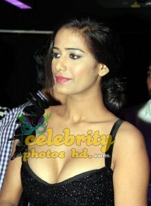 Indian super hot actress poonam pandey (1)
