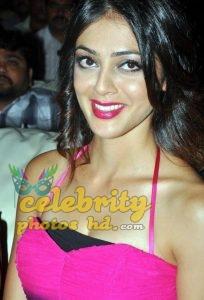 Telugu actress parvathi melton latest hot Photo's (2)